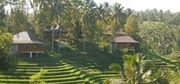 Nature Luxury Resorts and Hotels in Bali,  Indonesia
